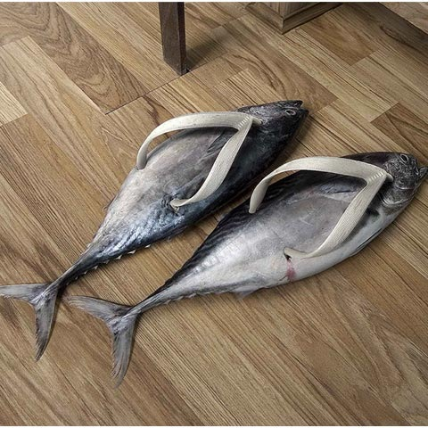 fishshoes